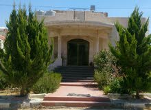 منزل 237م ارضي + 114 تسوية للبيع بالعيون شرق دوار العيادات