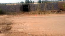 ارض 1000 متر للايجار علي طريق طنطا قطور