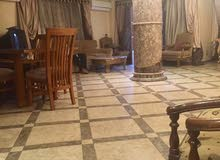 special apartment in Giza for rent