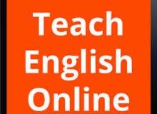 professional English teacher