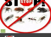تنظيف الفلل المجالس مكافحه الحشرات والقوارض