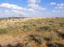 أرض بمنطقة أبوهادي