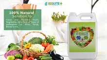 ECOLYTE FRUITS AND VEGETABLES DISINFECTANT 5 LITRE