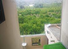 بيت سيق للإيجار اليومي بالجبل الأخضر