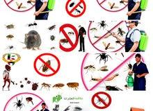 زهرة الخليج لمكافحة جميع انواع الحشرات باقل الاسعار