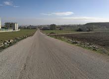ارض للبيع سكنية طريق الحصن اربد