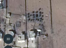 أرض  6 دونمات عليها بيت مسطح 125  كافة الخدمات