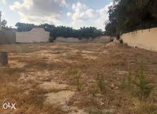 قطعة ارض بشهادة عقارية خلف مدرسة صقر قريش طريق الزراعية