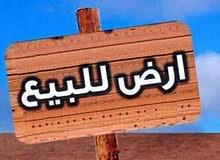 قطعه أرض في التنومه نزله البراجعه قرب نهر حسن