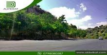 ارض مميزة للبيع على طريق السرو بمساحة 4920 م
