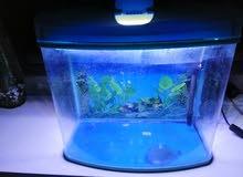 حوض سمك مستعمل للبيع