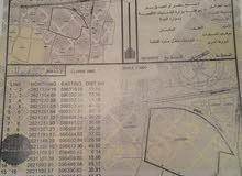 ارض زراعيه في بركاء حي عاصم على شارع السريع البحري