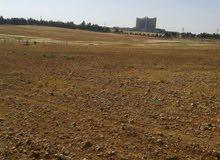أرض للبيع شرق جامعة العلوم والتكنولوجيا