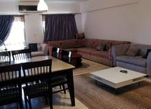 for rent in Cairo New Cairo apartment