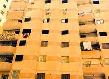 apartment area 140 sqm for sale