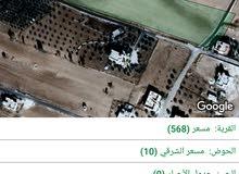 أرض  للبيع في محافظه الكرك أراضي القصر