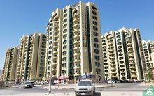 1 Bed Room For Rent in Ajman Rashidya Tower Ajman