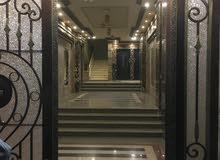 شقة امام كلية تجارة بشارع الحلو