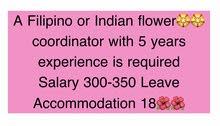 مطلوب منسق زهور فلبيني او هندي خبرة بالتنسيق الدوام 8 ساعات