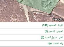 أرض البيع 6 دونم 300 متر منطقه شاليهات المصطبه