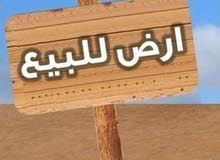 باقل اوفر بالتجمع الخامس للبيع قطعه ارض ناصية امتداد النرجس الغابة المتحجرة
