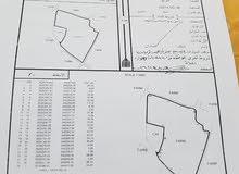 ارض زراعية للبيع في سلطنة عمان بسعر مغري