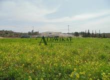ارض للبيع خلف جامعة الاسراء ( الطنيب ) بمساحة 500 م