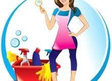 femme de ménage chez les familles et par journée 50526972