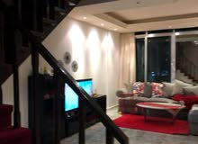 an apartment for rent in Abu Dhabi