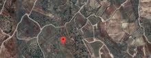 ارض مميزة 35 دونم في جور حماشا في عجلون للبيع
