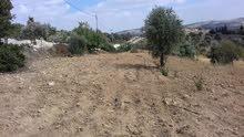 ارض للبيع 9 دنم و267م - اراضي عجلون- القرية عنجرة- حوض 12 شمسين