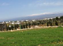 قطعة أرض للبيع اربد. بني كنانه. حبراص. مطله ومرتفعه ع مناطق اربد
