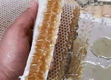 جميع أنواع العسل اليمني