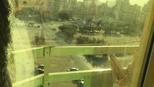 شقه مفروشه للإيجار  2 غرفه وصاله كبيره و2 حمام ومطبخ تري شارع تونس حولي