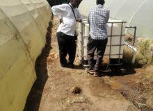 مهندس زراعي سوداني الجنسية