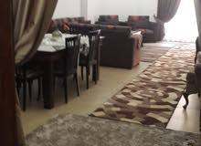 apartment in building  is for rent Alexandria