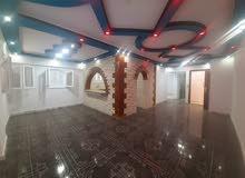 apartment for sale in Alexandria- Nakheel