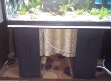 حوض سمك نباتات طبيعيه بكامل معداته
