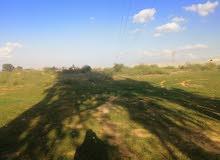 ارض في منطقة السواني