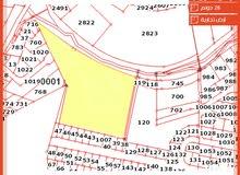 أرض تجارية للبيع مساحتها 28 دونم تقع على شارع رئيسي في منطقة رأس العين