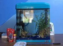 حوض سمك كرستال مع كامل اغراضه