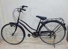 27 inch adult bicycle