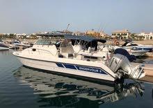 قارب صيد ورحلات بحرية سريع وول كرافت