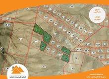 تملك بأجمل مواقع جنوب عمان خان الزبيب ارض مميزة جداً بسعر منافس
