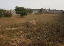 قطعة ارض للبيع مسحتها1176م على طريق قطران  قريبة عن ساحلي
