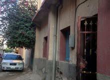 منزل دورين  الهضبة الخضراء . محلة خالد ابن الوليد