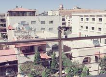 شقة جديدة سوبر ديلوكس للإيجار في ضاحية النخيل