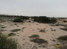 أرض على البحر مساحه هكتار ونص أتحد بي البحر ارتداد البحر 200 متر