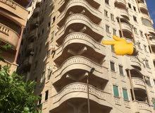 شقة سوبر لوكس الاسكندرية
