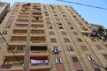 شقة 141م أمام مدرسة عبد القادر ابو عقادة السيوف